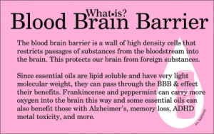 What is blood brain barrier