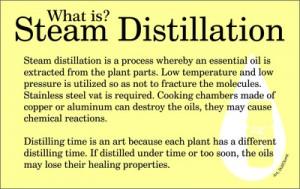 What is steam distillation